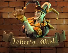 Jokers Wild slot